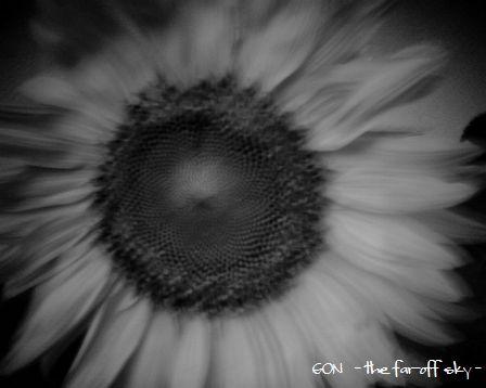 2009-07-28-01.jpg