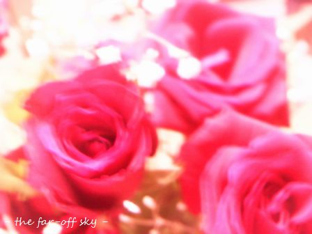 2009-09-04-06.jpg