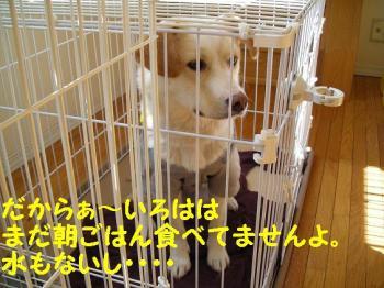 DSCN2677.jpg
