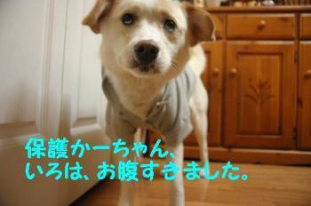 IMG_3769.jpg