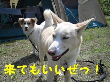 suifu090501.jpg