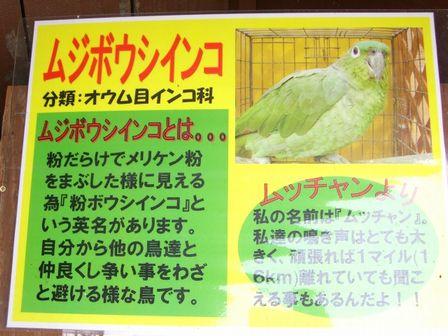 CIMG7960blog.jpg