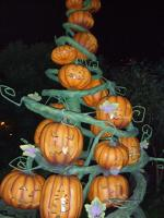pumpkin_tree.jpg