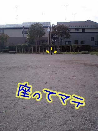 090825-1.jpg