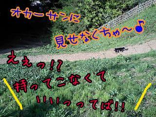 ba090423-004_20090423202536.jpg