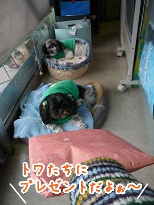 01-2009_02_25.jpg