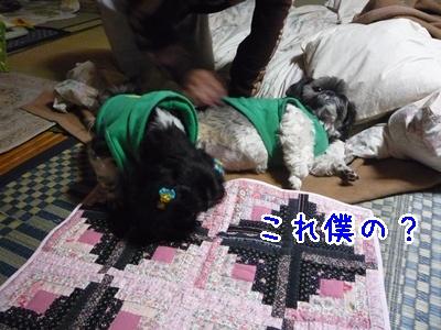 09-2009_02_25.jpg
