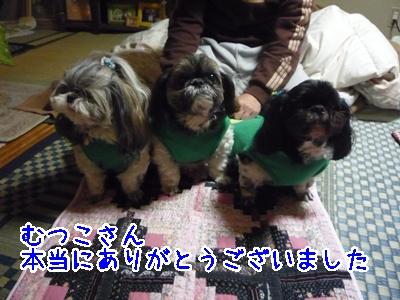 17-2009_02_25.jpg