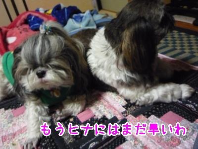 36-2009_02_25.jpg
