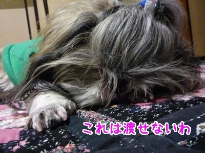 39-2009_02_25.jpg