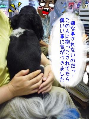42-20080819.jpg