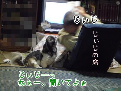 76-090114.jpg