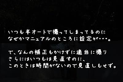 DSC_6404.jpg