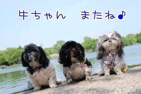 DSC_6688.jpg
