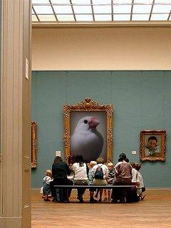 画廊のレハちゃん♪
