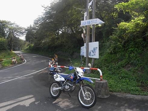 RIMG4836.jpg