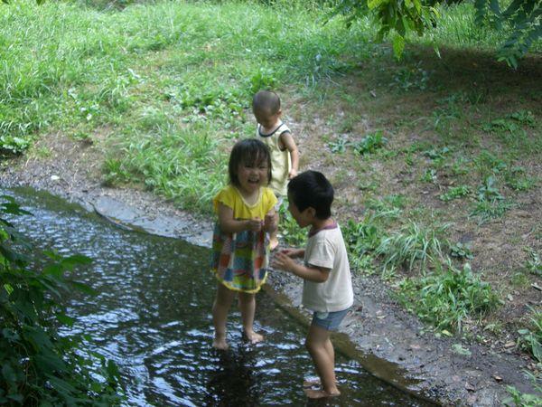 泉の森公園2008・08 002rs