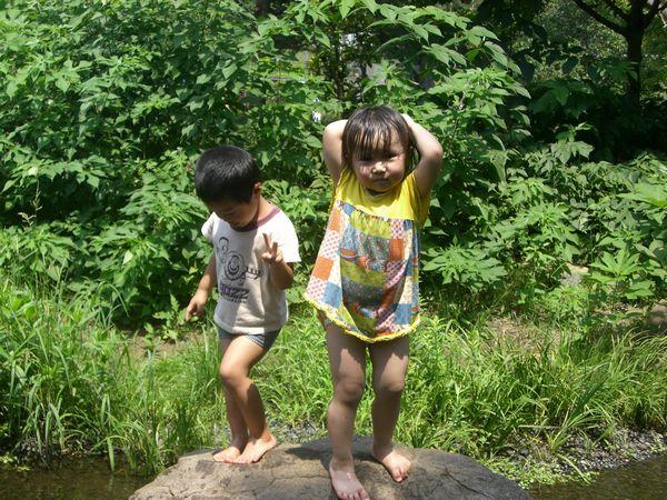 泉の森公園2008・08 004rs