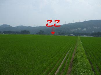 daiunji1.jpg