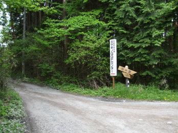 kainukizawa1.jpg