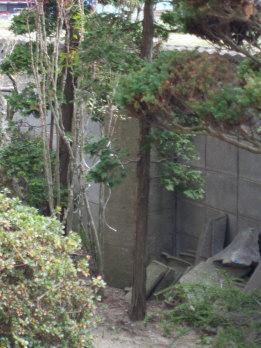 shigosen1.jpg