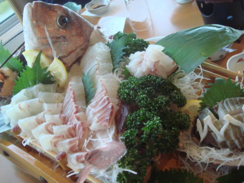 鯛の刺身 三重