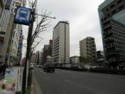 IMG_2811-s.jpg