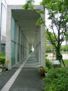 IMG_5900-s.jpg