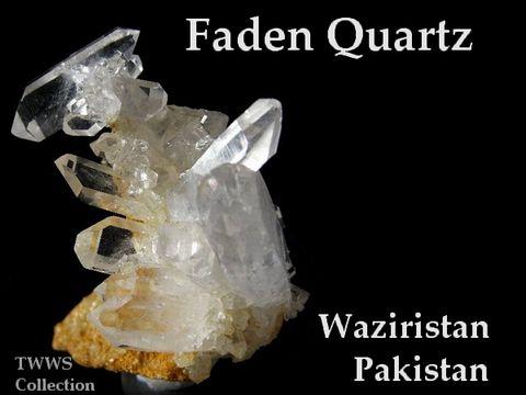 ファーデン_パキスタン1
