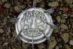 1542_convert_20100706080752.jpg