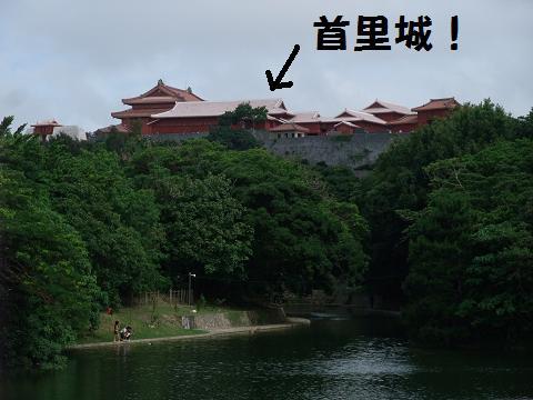 龍譚池 (りゅうたんいけ) ごしの首里城
