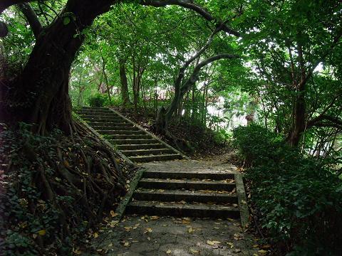 龍譚池 (りゅうたんいけ) 池沿いの道 2