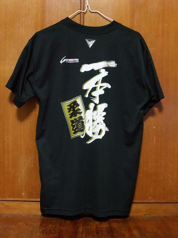 美ら島 沖縄総体 2010 Tシャツ 一本勝