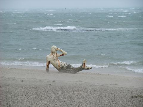 台風14号 2010 中城の人魚姫