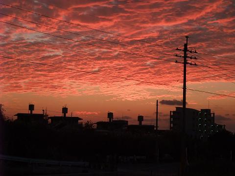 夕焼け 20 (Sat) Nov 2010