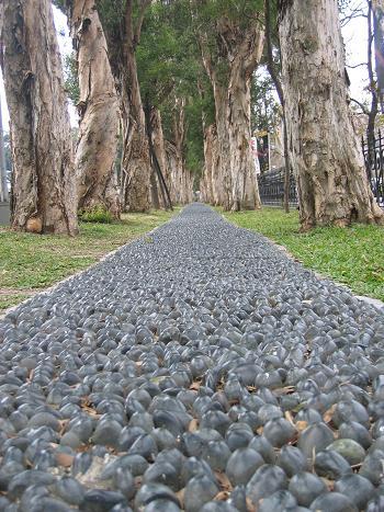 健康歩道 (台湾 - 台北)