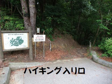 県民の森 ハイキング登山コース 入り口