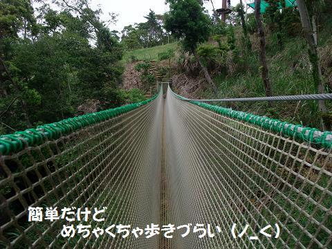 FOREST ADVENTURE (フォレストアドベンチャー IN 恩納) TIBETAN BRIDGE