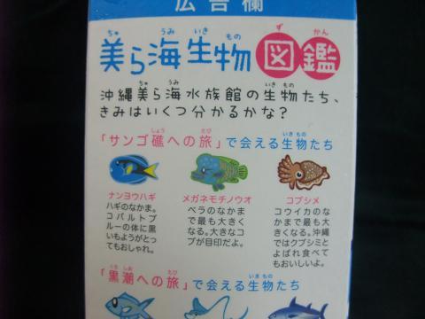 沖縄明治乳業(株) 美ら海ウォーター シークヮーサー味 3