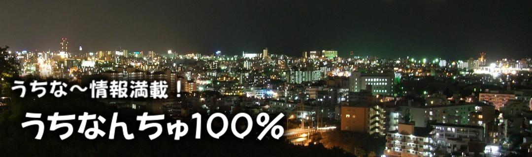 沖縄ガイド日記 うちなんちゅ100% トップ 沢岻夜景