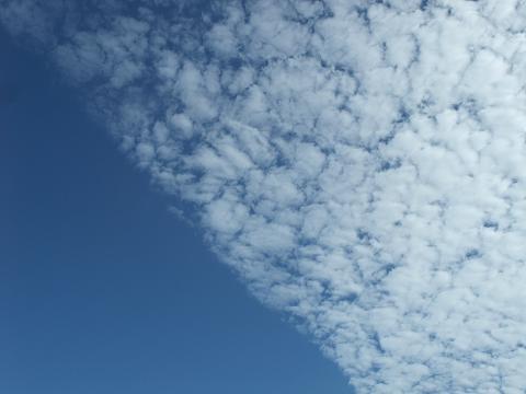 青空 2 (Fri) Dec 2011 アップ