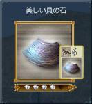 美しい貝の石