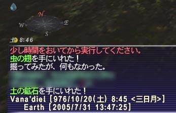 20050731.jpg