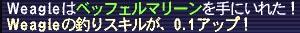 2005100404.jpg