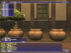 FF-20051127-075226.jpg
