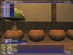FF-20060122-141057.jpg