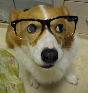 老眼鏡!?