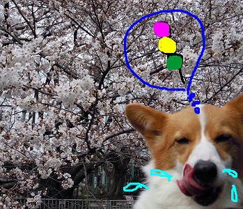 花よりだんご顔(1)