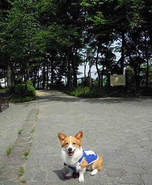 塚山その3