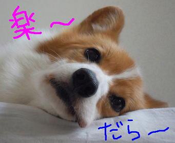 ふ~ん(1)